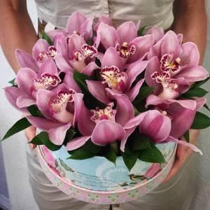 13 розовых орхидей в коробке R796